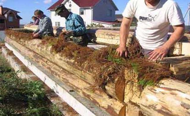 Чем утеплить бревенчатый деревянный дом снаружи. процесс конопатки стен. утеплительные работы изнутри