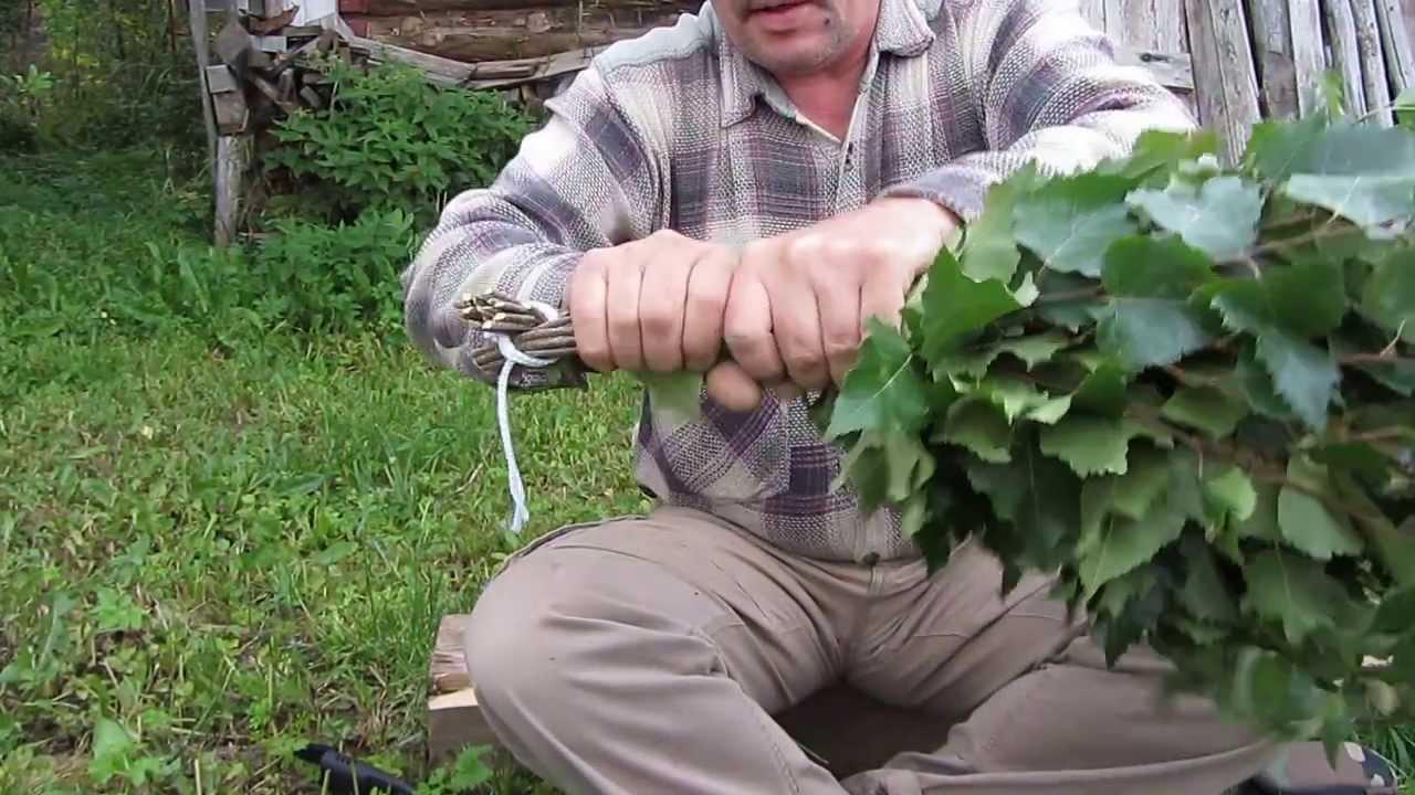 Запаривание дубового веника: правильные методы подготовки банного оружия
