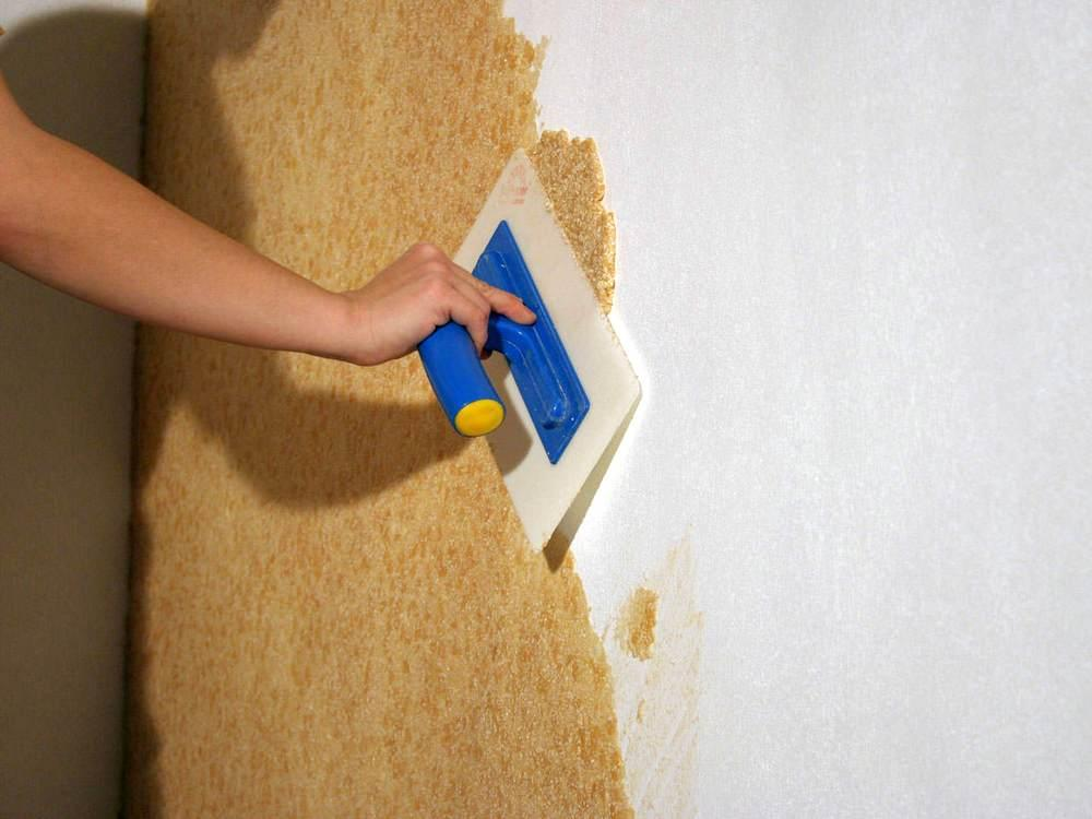 Как наносить жидкие обои на стену и потолок: видео и фото монтажа своими руками