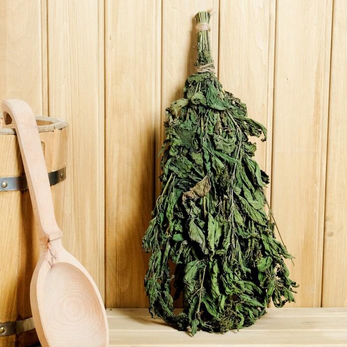 Веник из крапивы для бани: чем полезен, как сделать, как париться