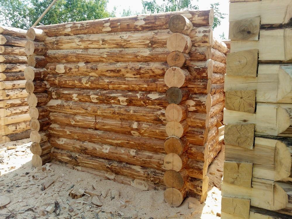Липа как материал для строительства бани: плюсы и минусы | плюсы и минусы