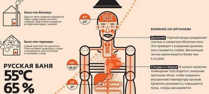 Рост мышц и баня! есть ли противоречия? | online-obzor.ru