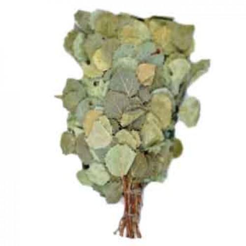 Какие бывают веники для бани: еловый, осиновый из сосны и ивы