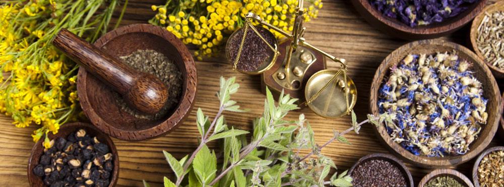 Травы для бани своими руками: целебные свойства даров природы