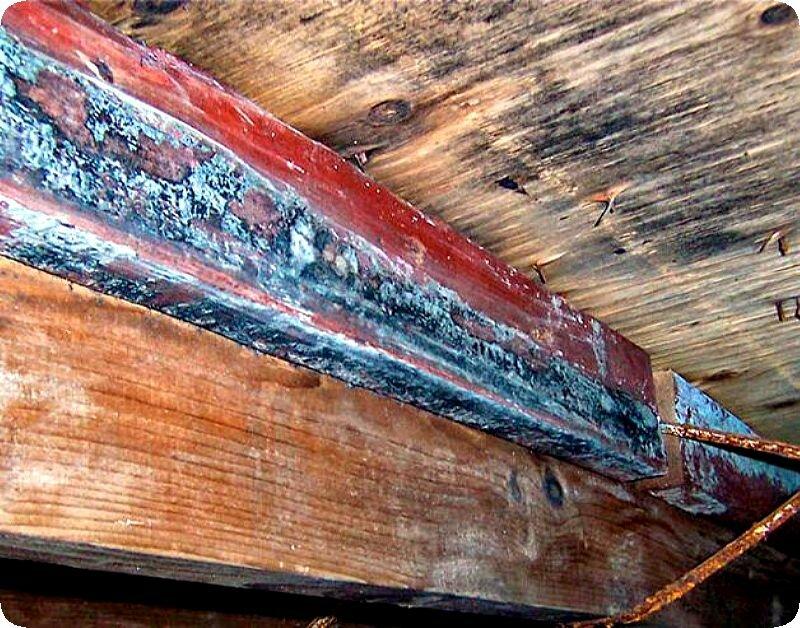 Как убрать плесень с деревянных поверхностей? уничтожение спор грибка