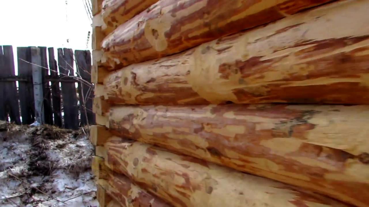 Баня из осины, лиственницы, липы, кедра: излагаем обстоятельно