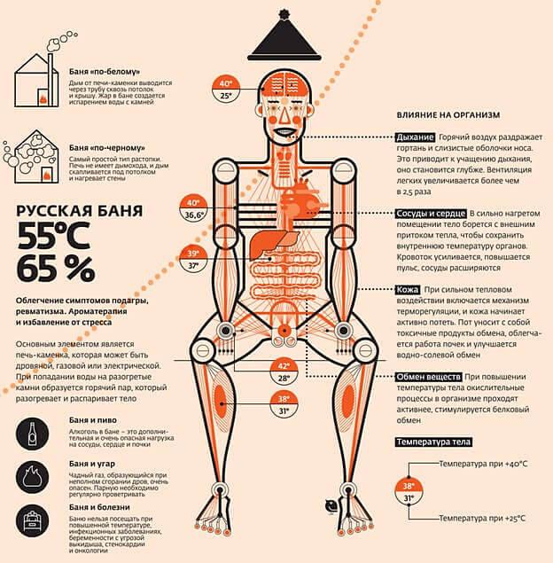 Действие бани на мышечную систему
