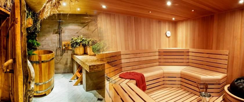 Чем отличается баня от сауны (41 фото): что лучше в доме и в чём отличие русской бани от немецкой, в чём разница между парилкой и сауной
