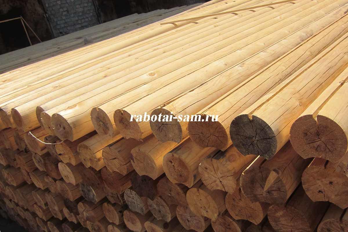 Из какого дерева лучше строить баню: породы древесины, плюсы и минусы